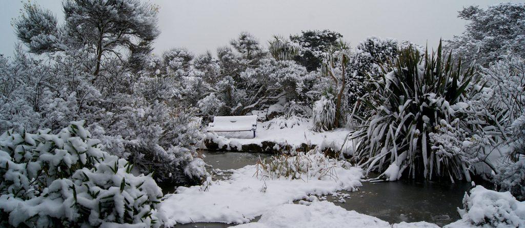 Aj v zime sa treba o jazierko riadne starať
